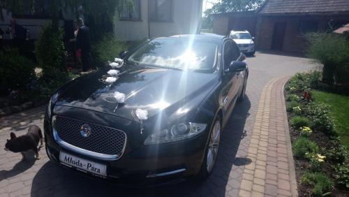 Białe kwiatki Jaguar XJ Kraków, auto na ślub Kraków