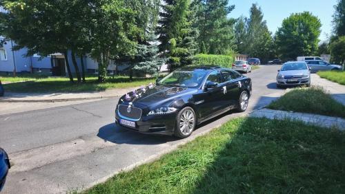 Dekoracja biało-fioletowa Jaguar XJ
