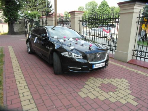 Różowe i białe kwiatki do dekoracji Jaguar XJ Kraków.