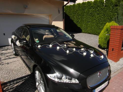 Białe kwiatuszki Jaguar XJ.